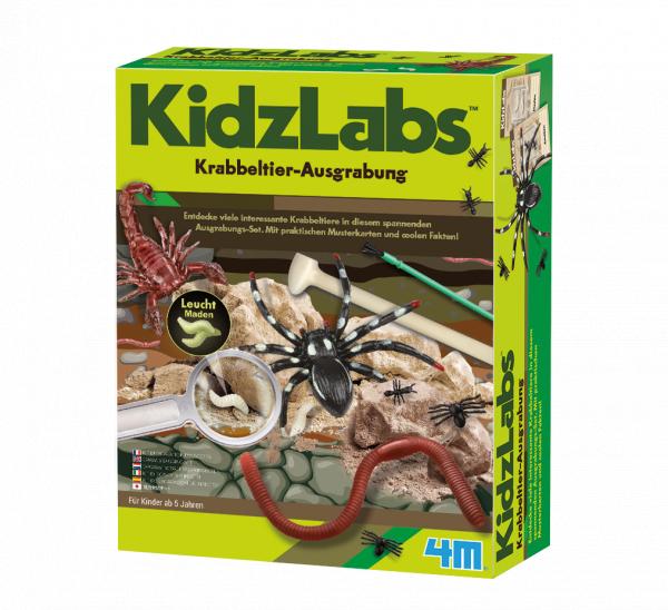 Krabbeltierausgrabung - KidzLabs