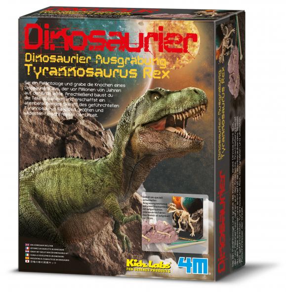 Dinosaurier Ausgrabung T-Rex